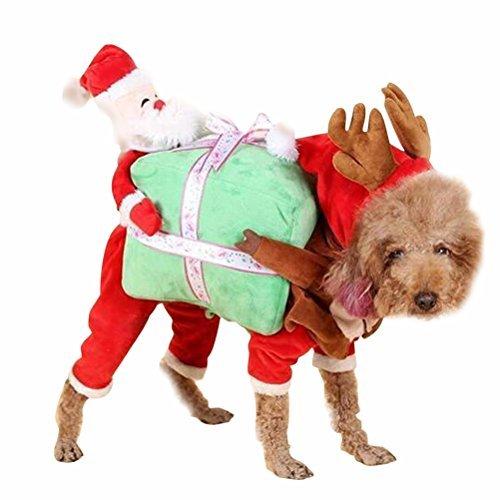 perro disfraz reno