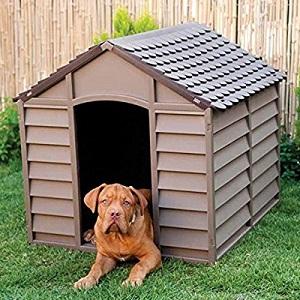 casa de perros gigantes
