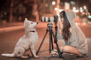Cámara para Perros: Sistema de Seguridad y Vigilancia para Mascotas
