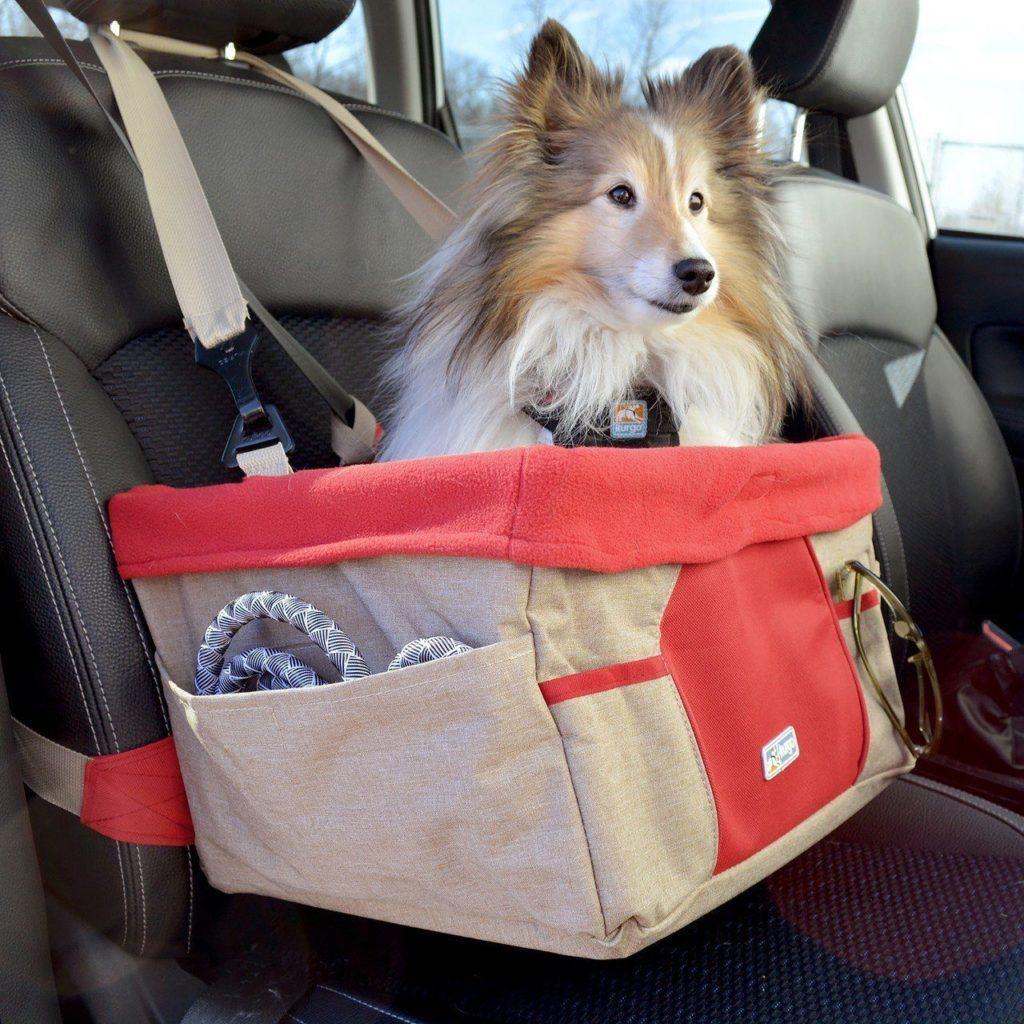 silla para perros en auto