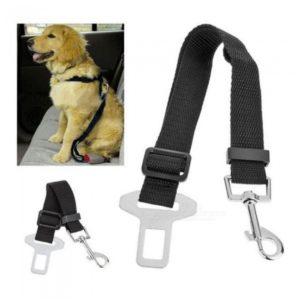 sistema efectivo de seguridad para perros