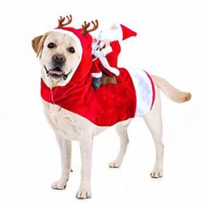 perruno y su disfraz de navidad