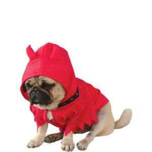 canino y disfraz de halloween