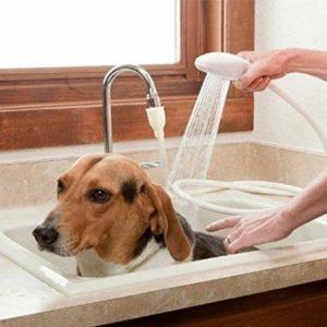 manguera para duchar a canes