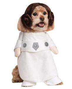 hermoso perro disfrazado