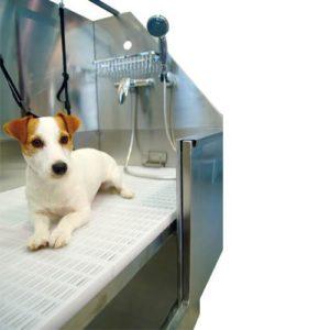 bañera para duchar a los canes